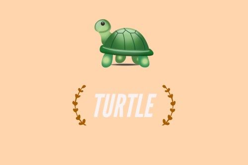 What Does The Turtle Emoji Mean Emoji Meaning